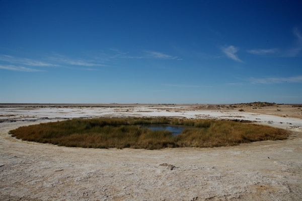 Draft Great Artesian Basin Strategic Management Plan 2018